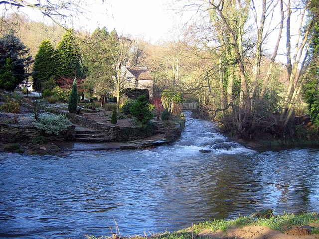 Tributary from Nettledale entering River Rye - geograph.org.uk - 1615893