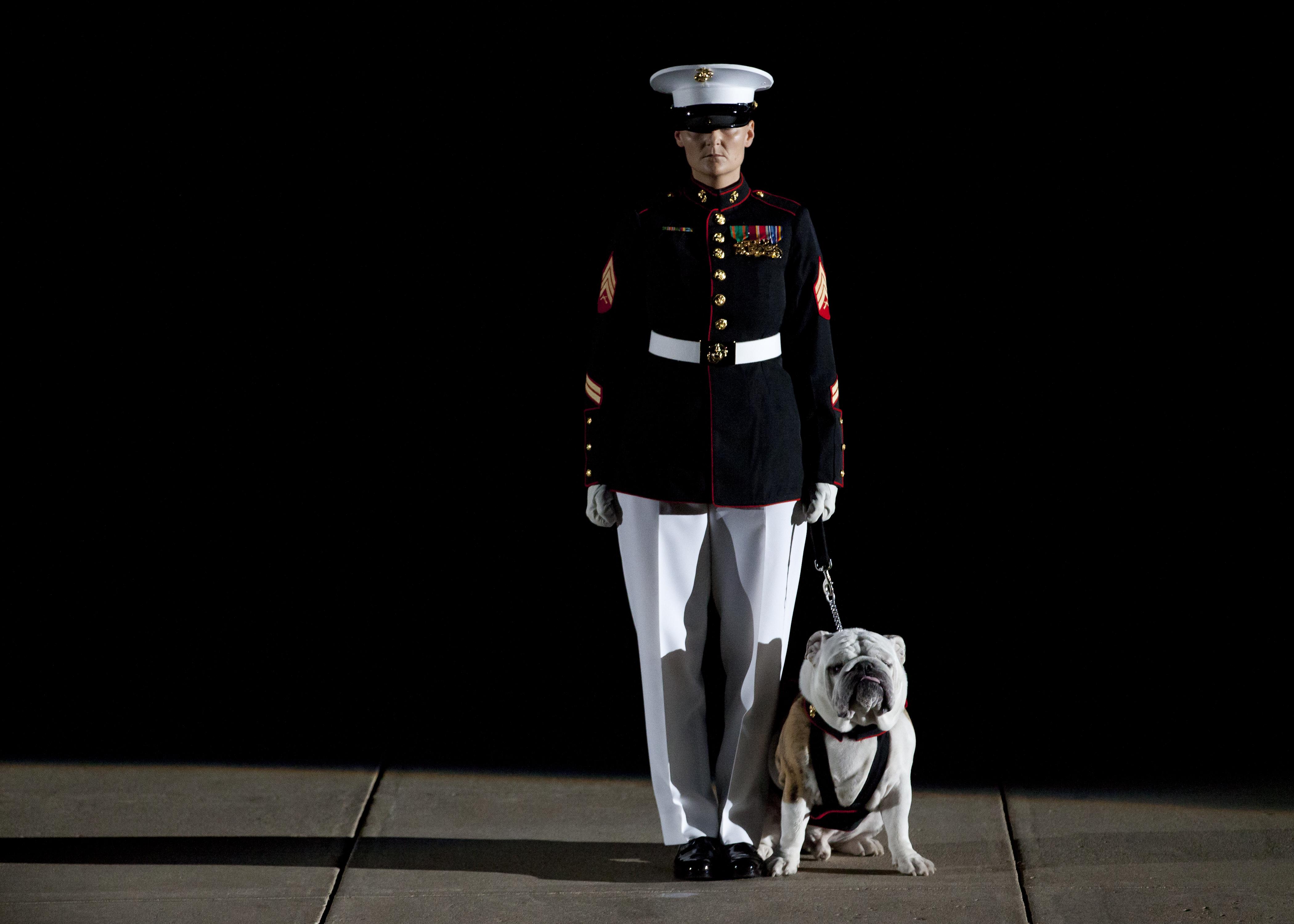 File:U.S. Marine Corps Mascot Handler Sgt. K.L. Maynard ...