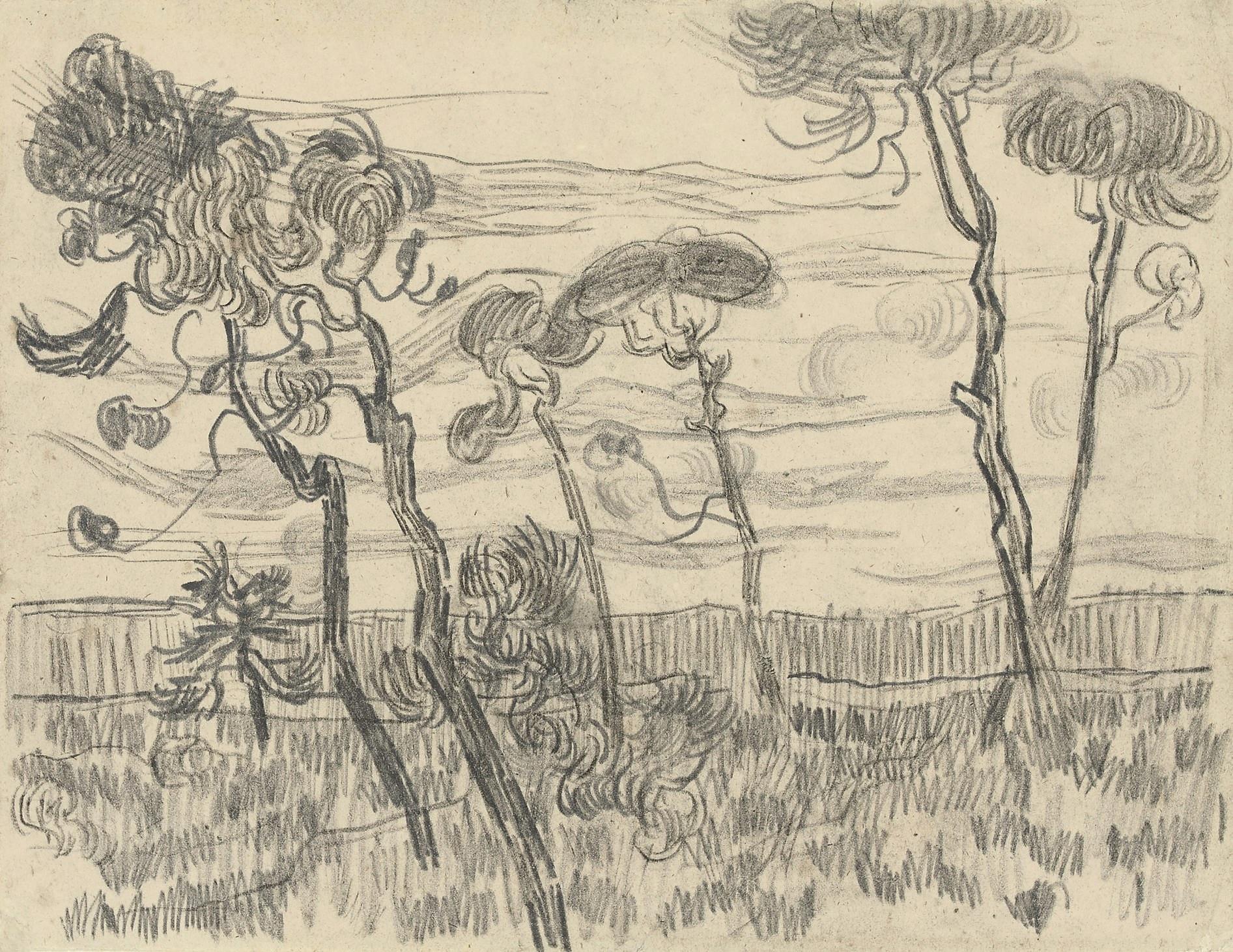 Famous Expressive Line Art : File vincent van gogh six pines near the enclosure wall