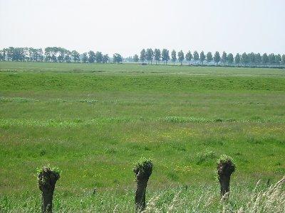 http://upload.wikimedia.org/wikipedia/commons/2/24/Weidegebied.jpg