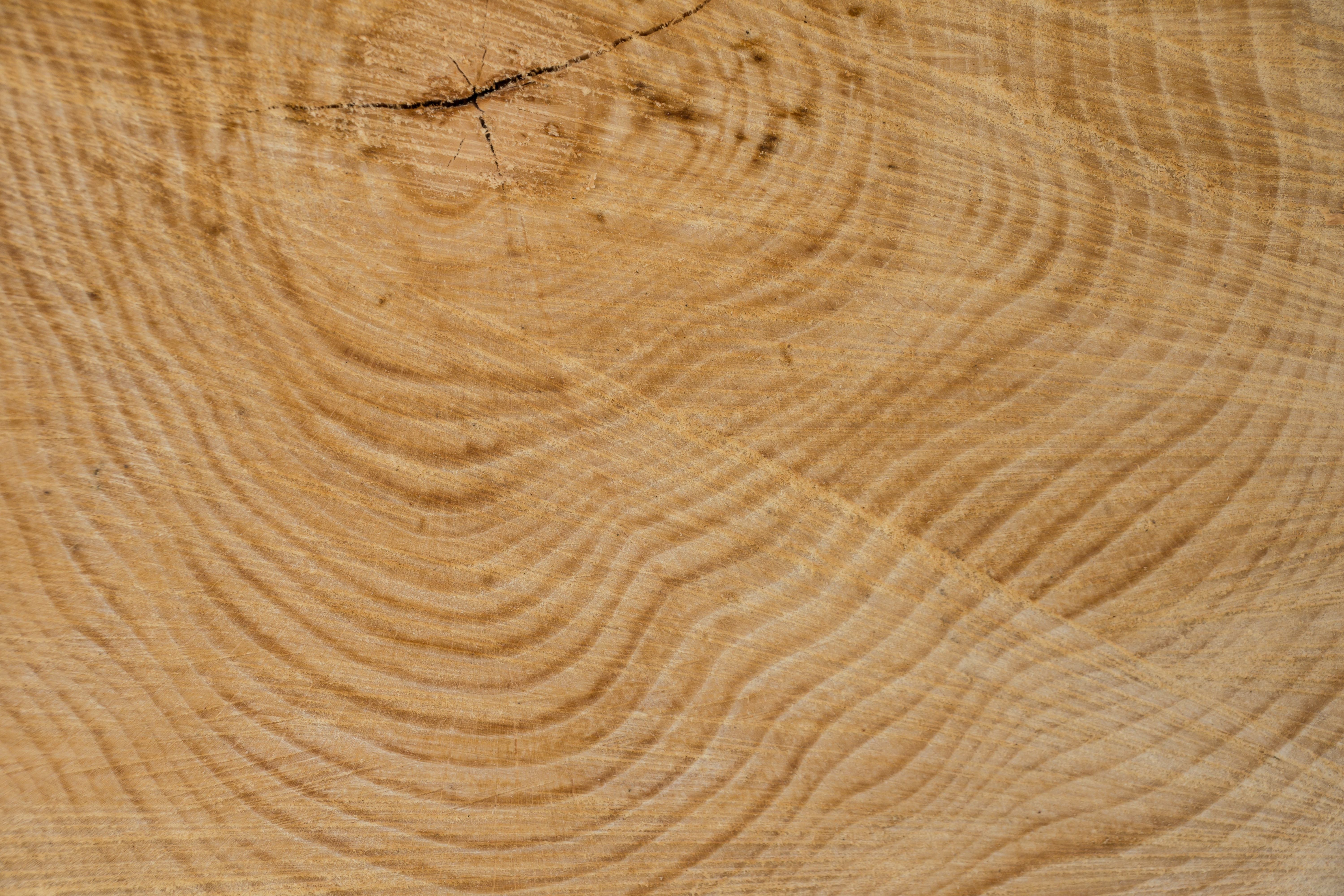 Tree Ring Material