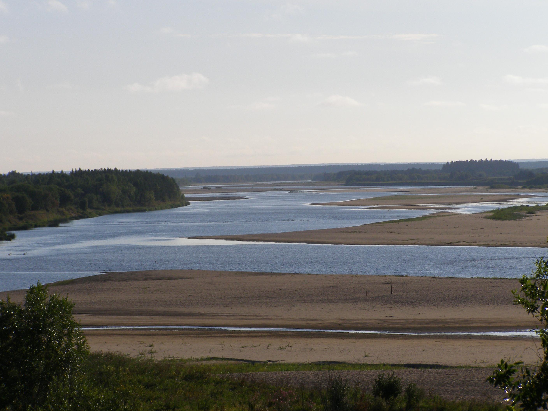 Река Вага летом.jpg