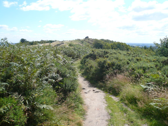 Approaching Ashover Rock from Alton Lane - geograph.org.uk - 519342