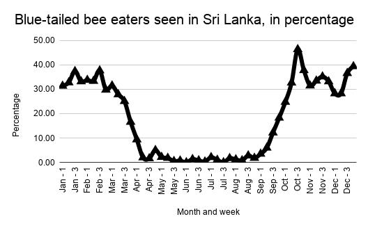 Blue-tailed bee eaters seen in Sri Lanka, in percentage