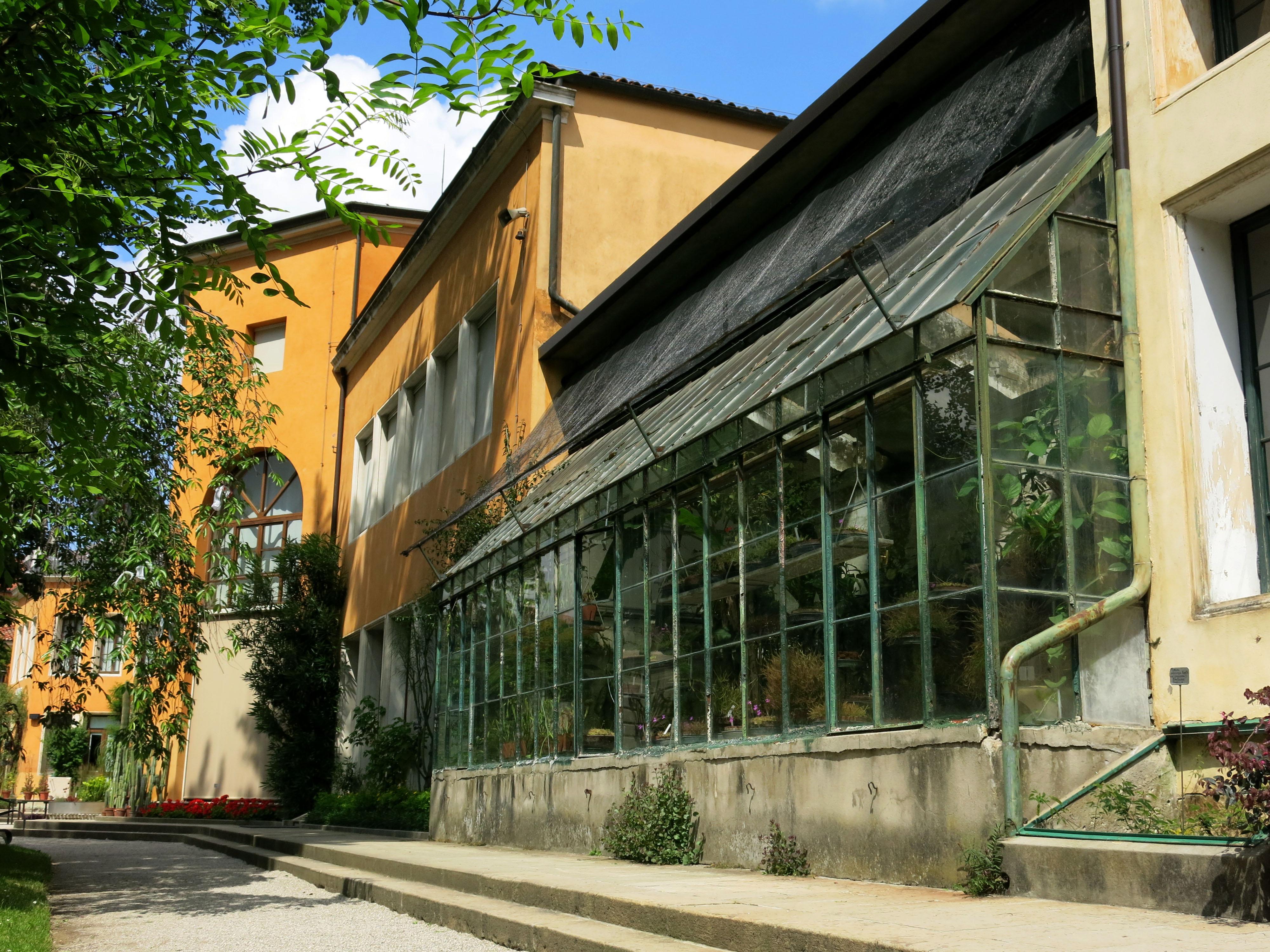 Datei:Botanischer Garten Padua Gewächshaus.jpg