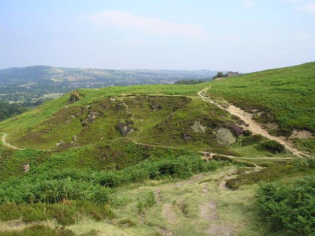 Burley Moor - geograph.org.uk - 201262