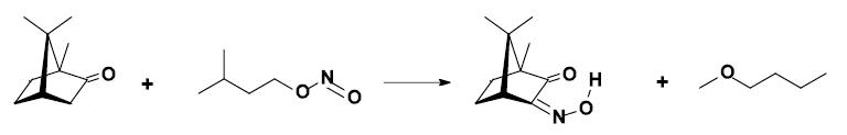 Camphor-Isonitrosocamphor.png