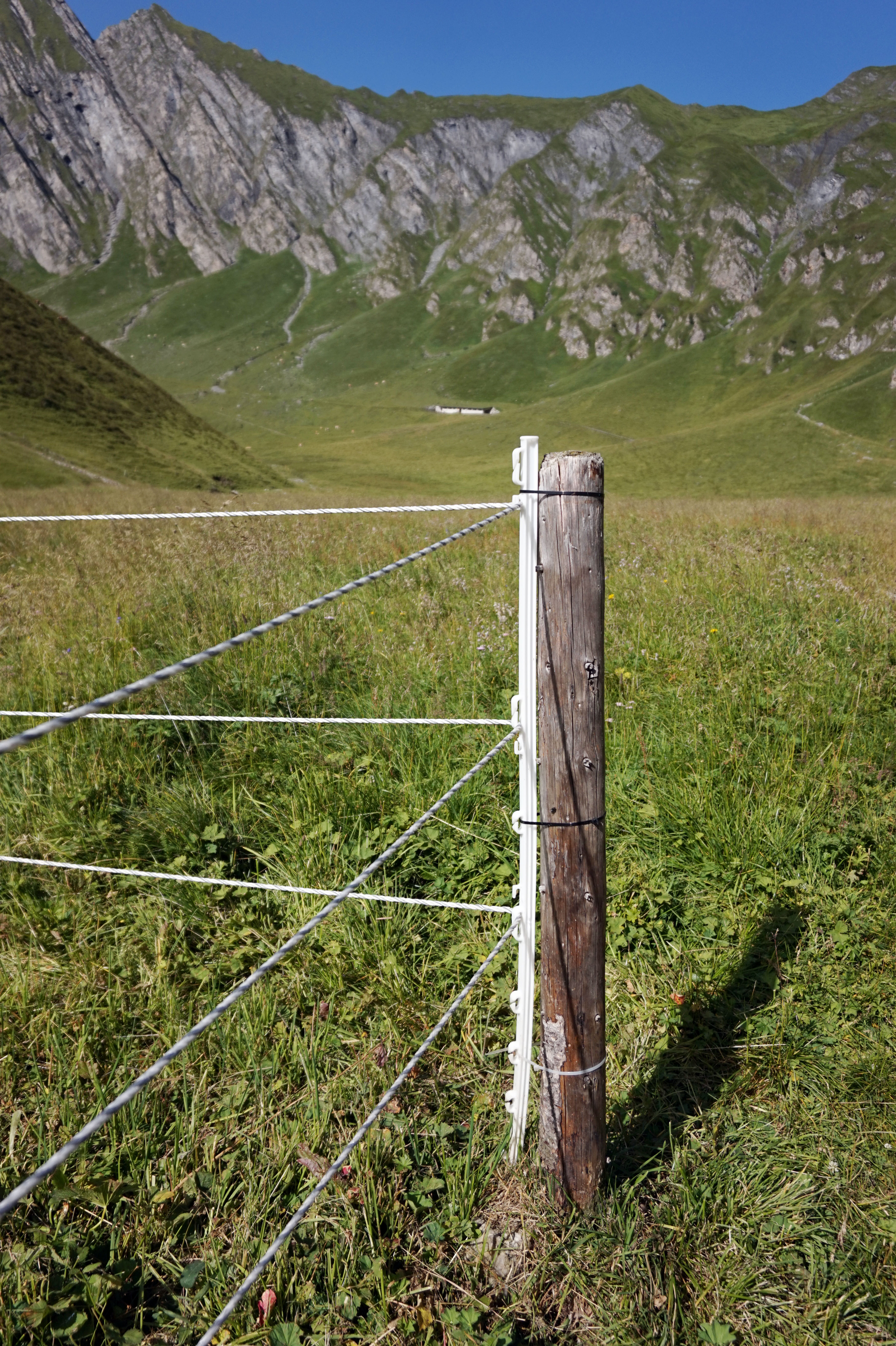Fileelectric Fence In Austria Wikimedia Commons Electric Wire