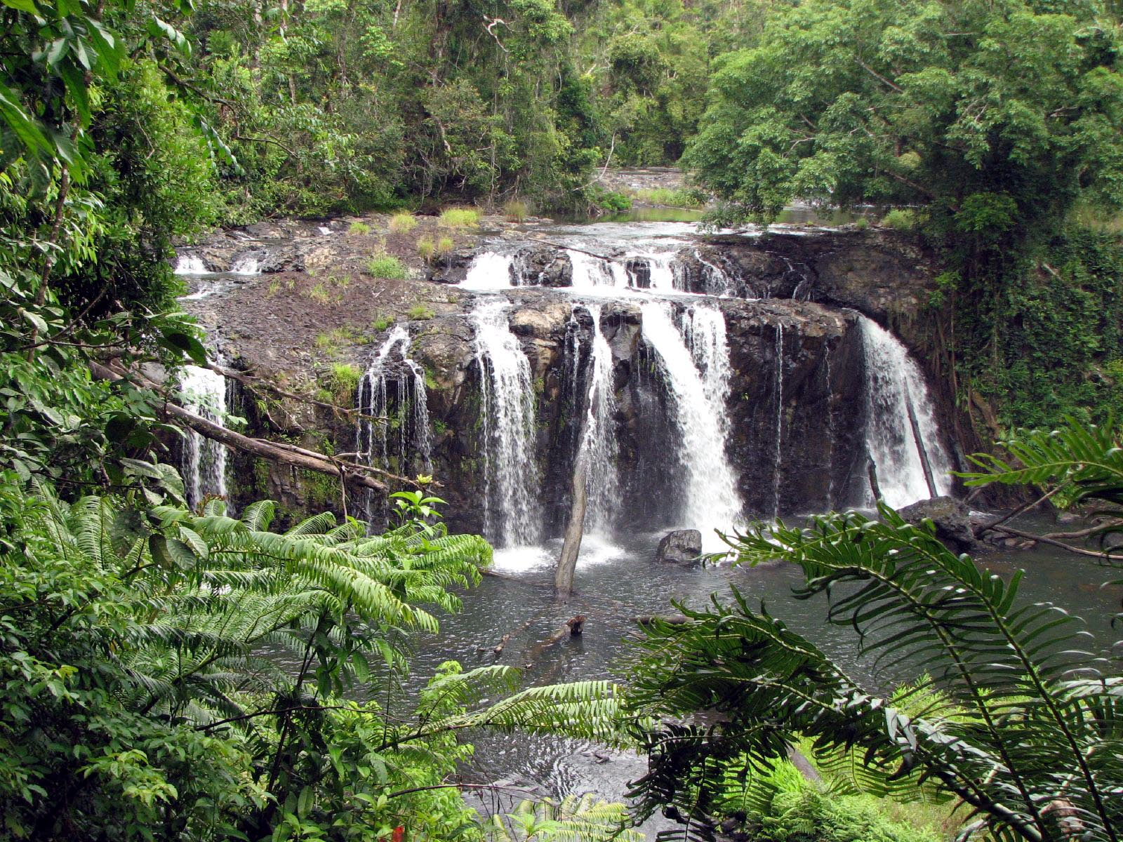 Atherton Tablelands Australia  city photos gallery : Description Falls 1 Atherton Tableland, Queensland, Australia