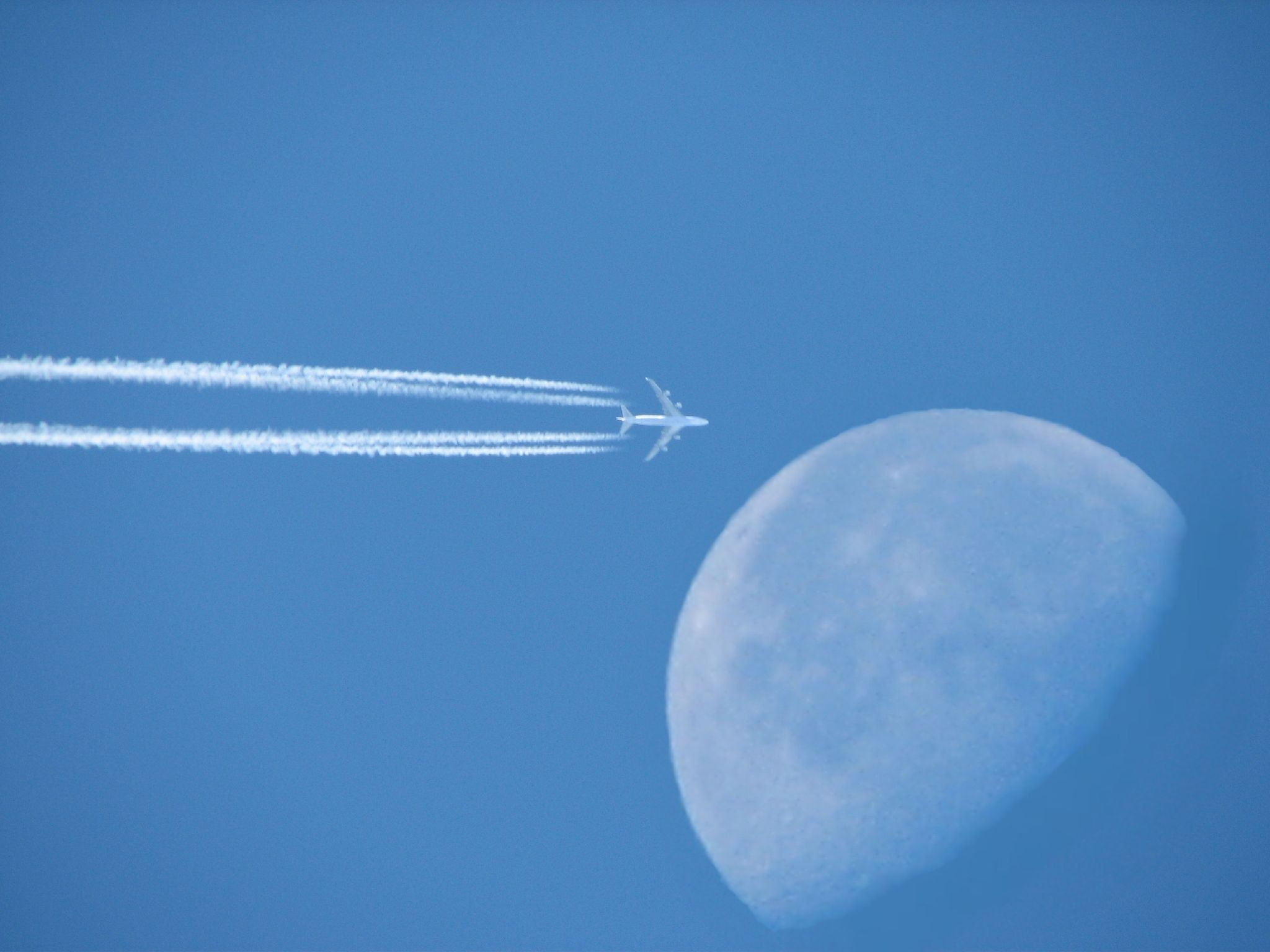 Fly Me To The Moon Chart: Fly Me To The Moon.jpg - Wikimedia Commons,Chart
