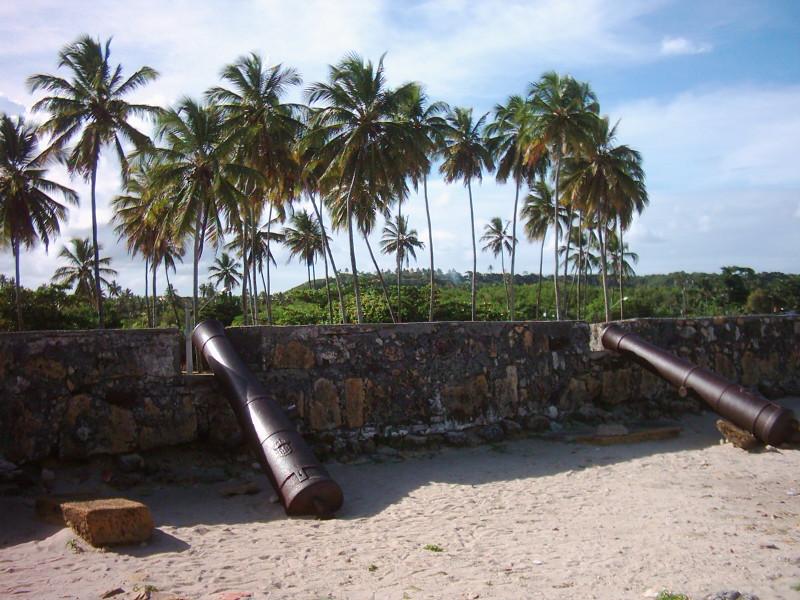 fort orange  dutch brazil