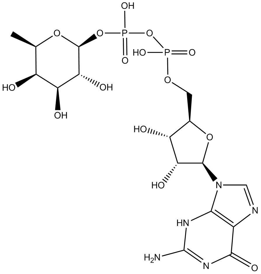 Guanosine Diphosphate; GDP