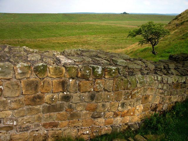 File:Hadrian's Wall, Sycamore Gap - geograph.org.uk - 907822.jpg