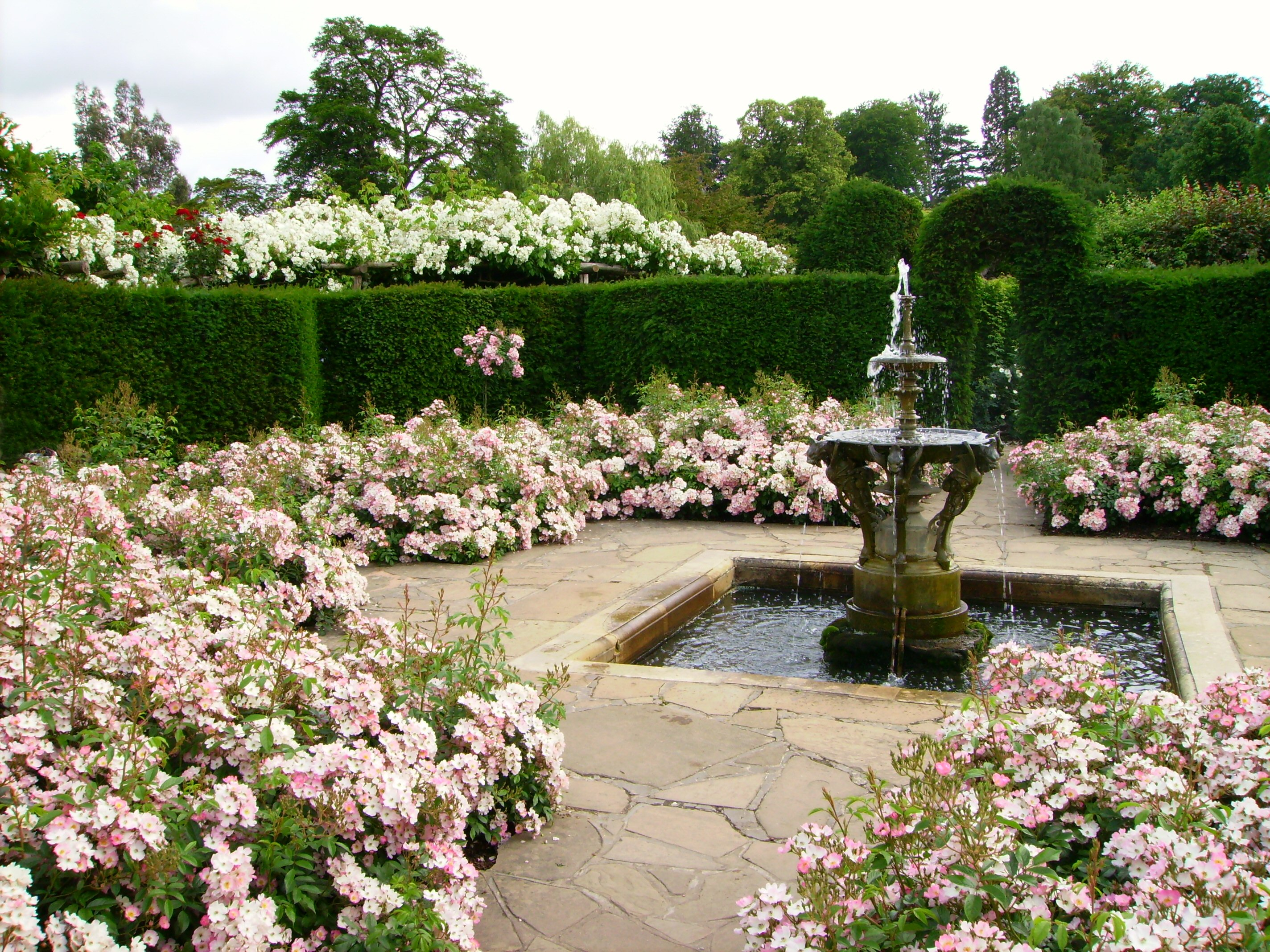 File Hever Castle Rose Garden With Fountain Jpg