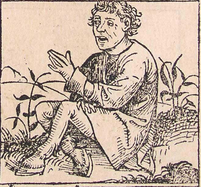 Соломон  Википедия