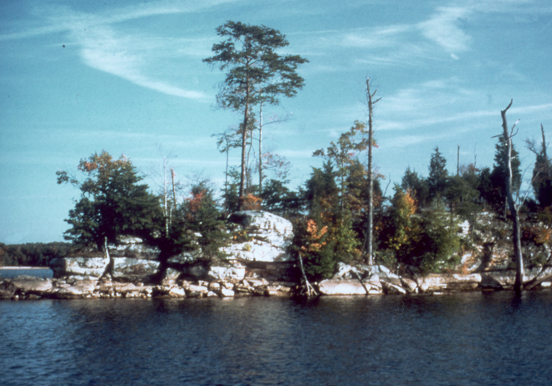laurel lake ky map File Laurel River Lake Kentucky Jpg Wikimedia Commons laurel lake ky map