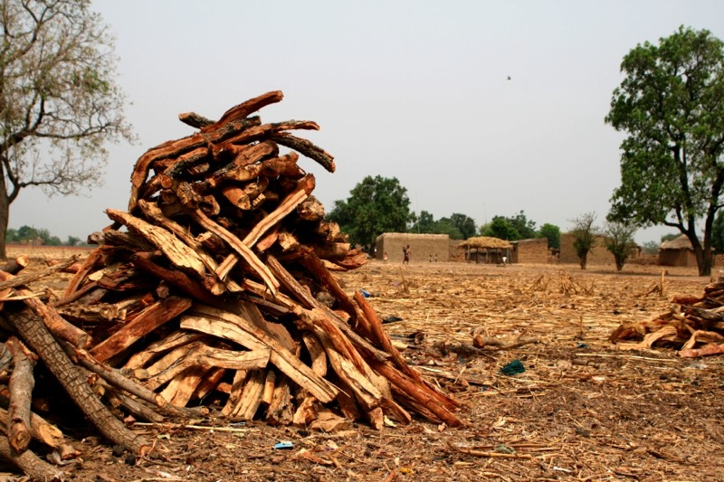 File:Mali firewood.jpg