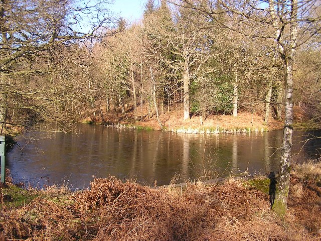 Description Man Made Pond  geograph.org.uk  120093.jpg