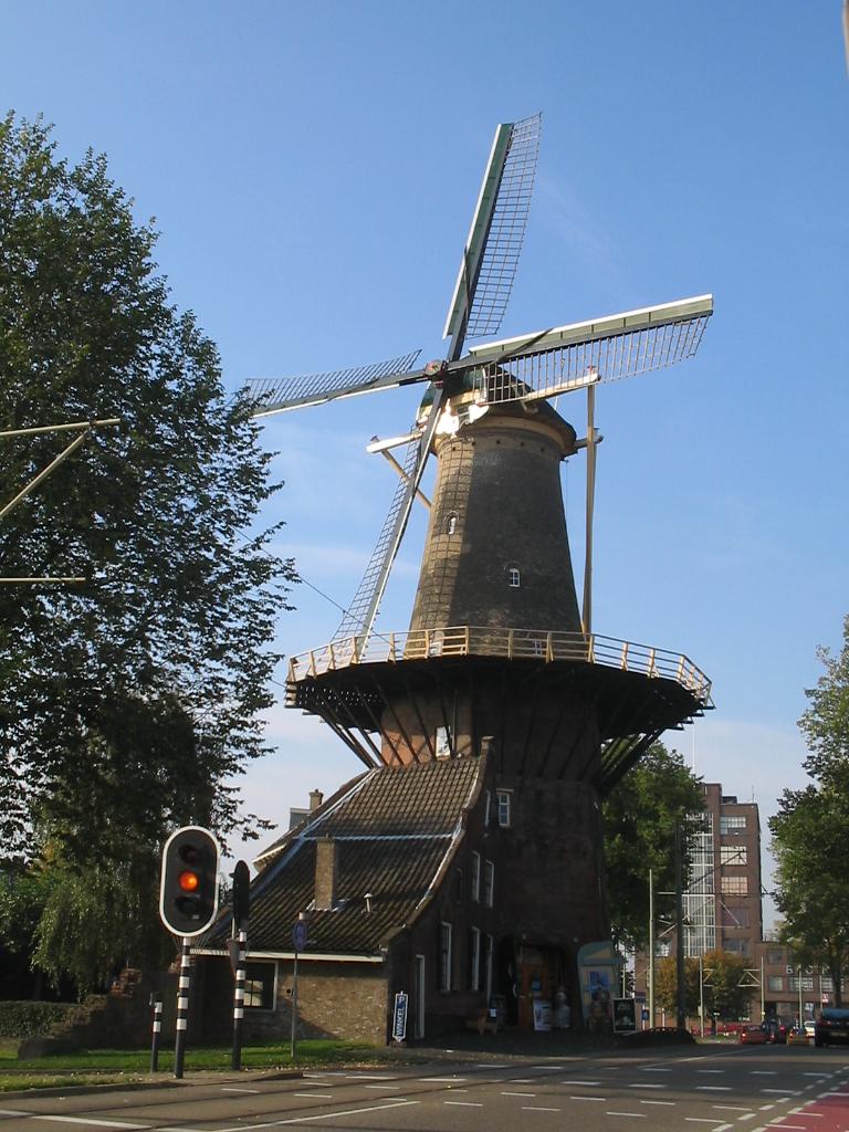 De Roos (oktober 2005)