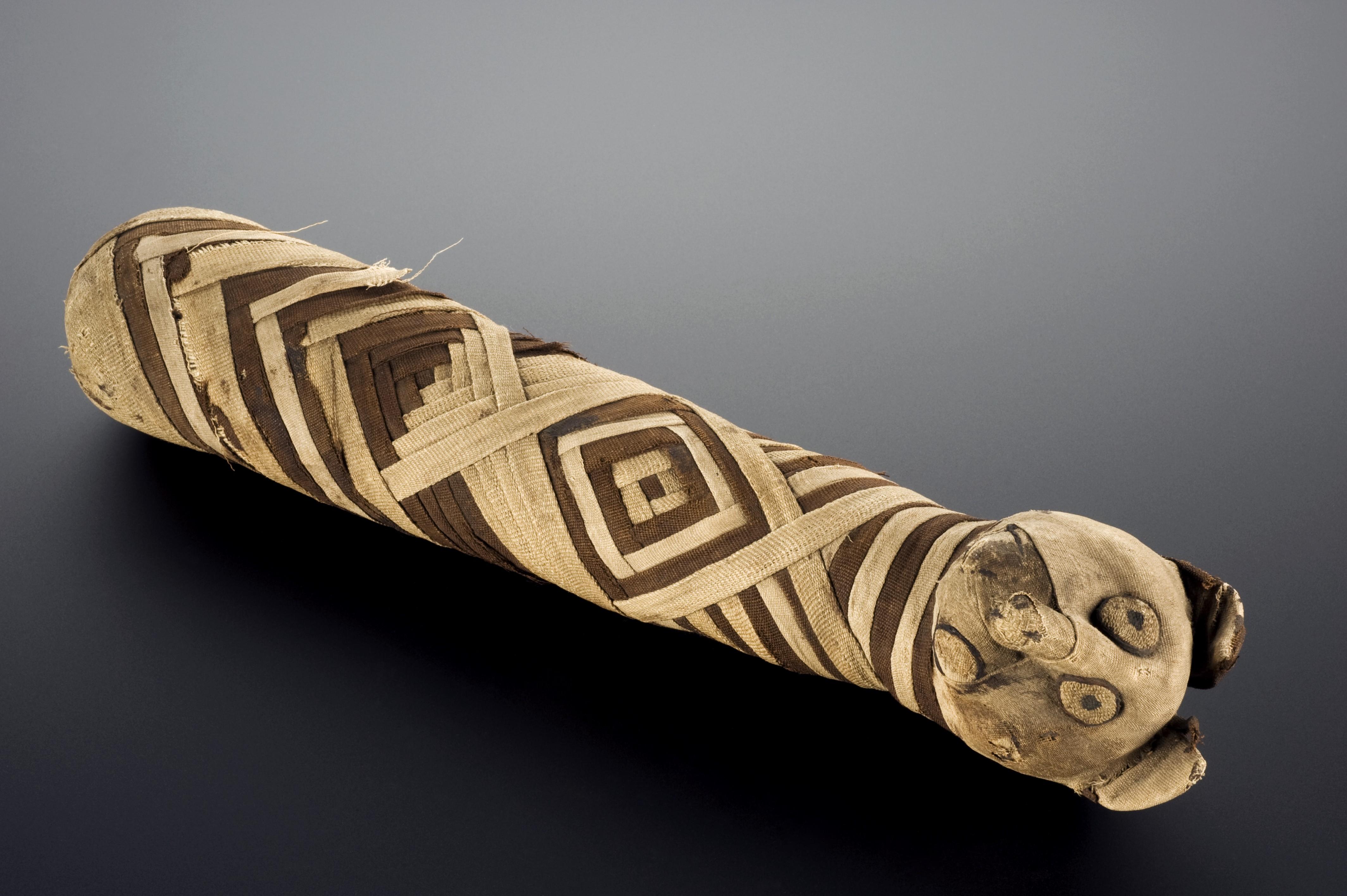 File:Mummified cat, ancient Egypt, 2000-100 BCE Wellcome ...: http://commons.wikimedia.org/wiki/File:Mummified_cat,_ancient_Egypt,_2000-100_BCE_Wellcome_L0057093.jpg