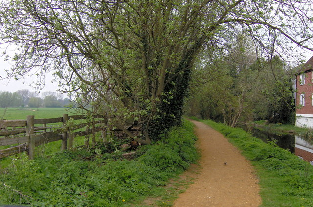 Path by the River Stour, Sudbury - geograph.org.uk - 322373