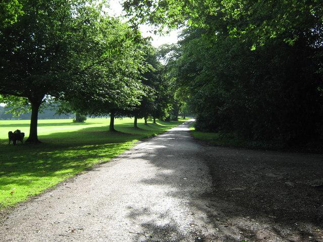 Path through Worden Park - geograph.org.uk - 1385149