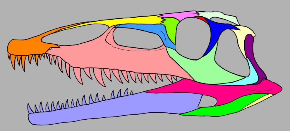 Qianosuchus