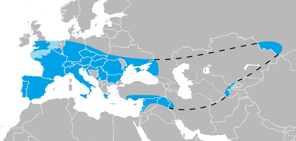 A map depicting the range of the extinct Homo neanderthalensis