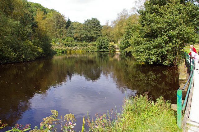 Reservoir at the north end of Compstall Navigation, Etherow Country Park - geograph.org.uk - 992824