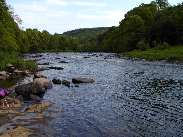 The River Eden at Combe Wood - geograph.org.uk - 95741