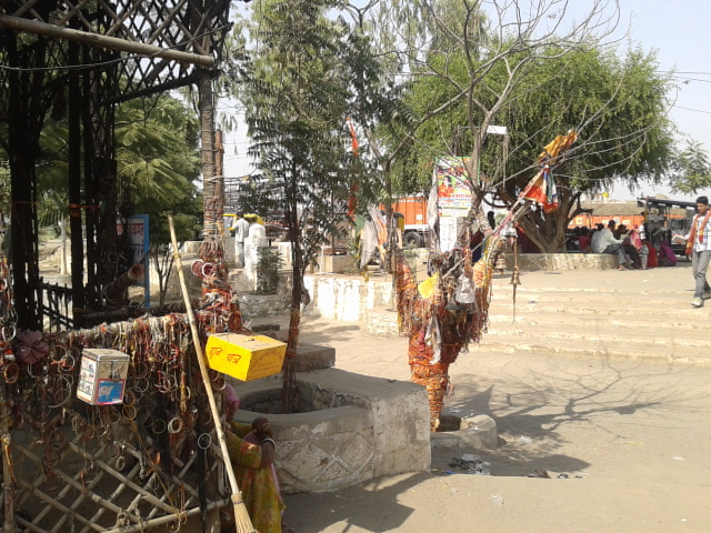 Om Banna Tree_at_chotila