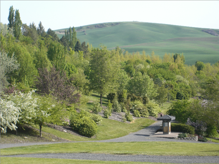 File:UI-arboretum-spring-moscow-id-us.png