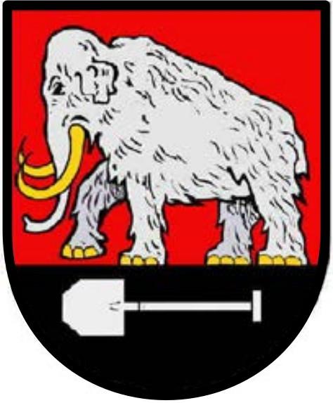Wappen Seedorf.jpg