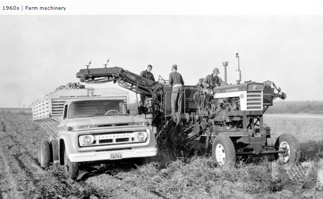 file1960s potato farming equipmentpng