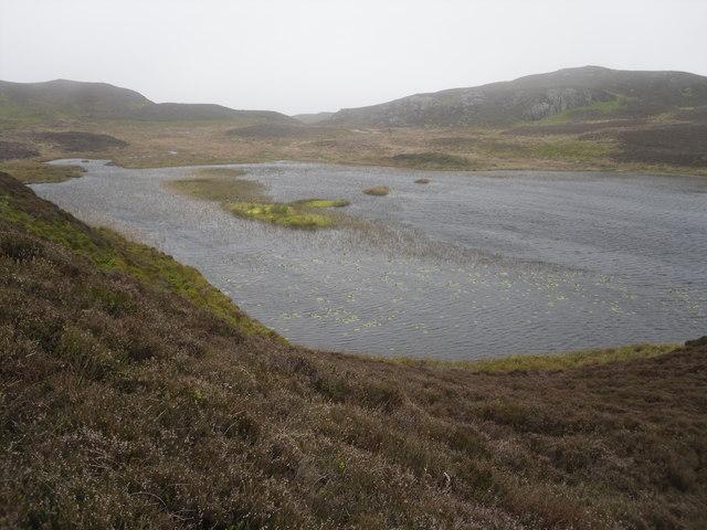 A windswept Llyn Pen Moelyn - geograph.org.uk - 1312308