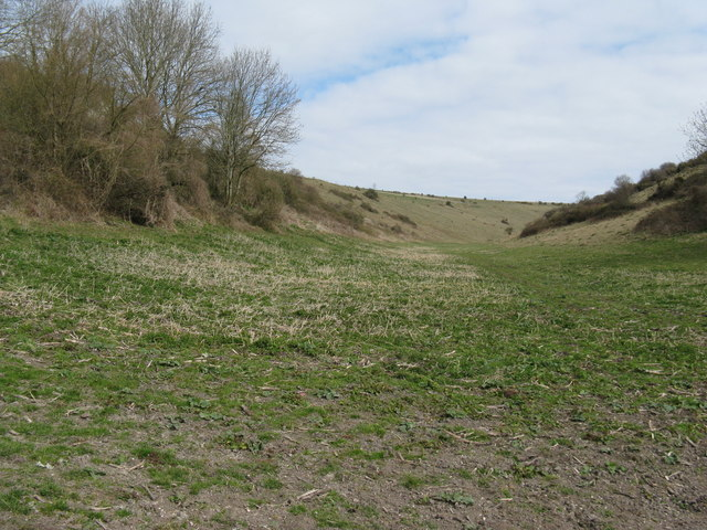 File:Access land between The Burgh and Rackham Hill - geograph.org.uk - 1226143.jpg
