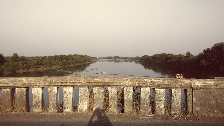 જસદણમાં ભાદર નદી પર કોઝ-વે સ્થળે મેજર બ્રિજ- બોક્ષ કલ્વર્ટ નાળા માટે રૂ. 2.60 કરોડના કામોને રાજ્ય સરકારે આપી મંજૂરી