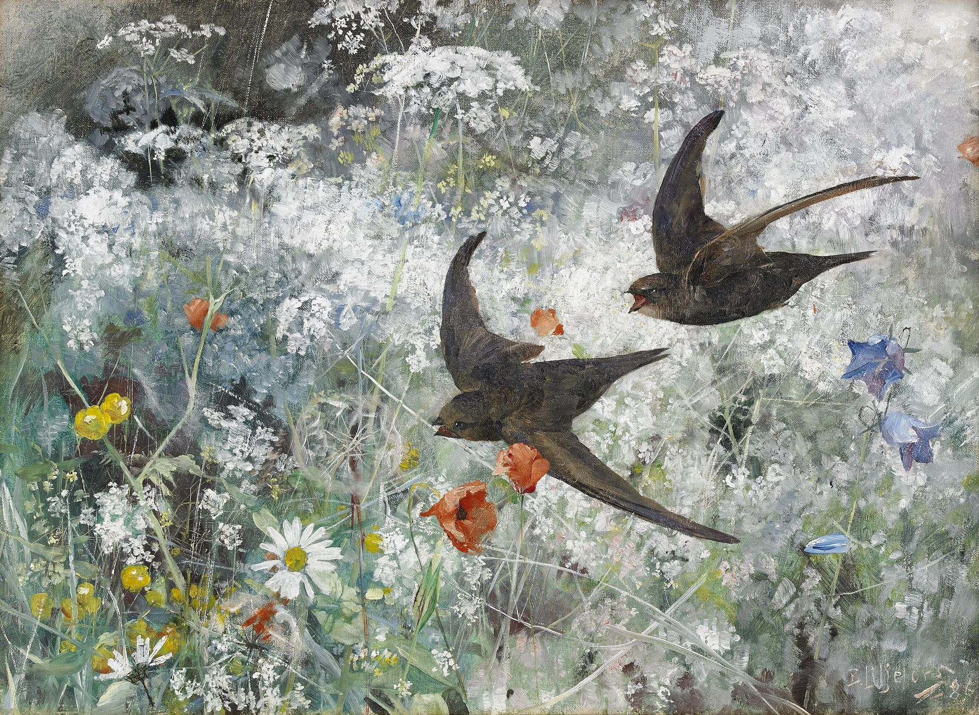 File:Bruno Liljefors - Common Swifts 1886.jpg - Wikimedia Commons