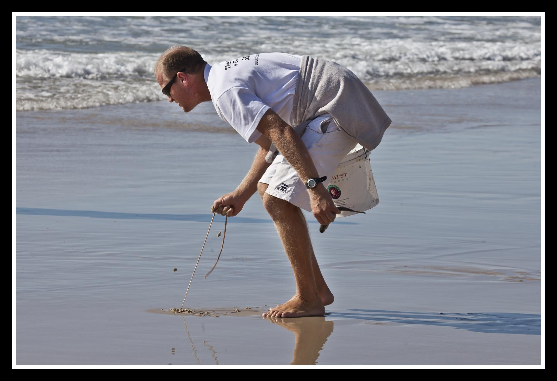 File Catching Beach Worms Surfers Paradise 1 6209385058 Jpg