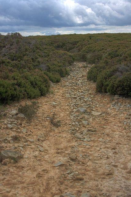 File:Dried Up Stream Bed, Wheeldale Moor - geograph.org.uk ...