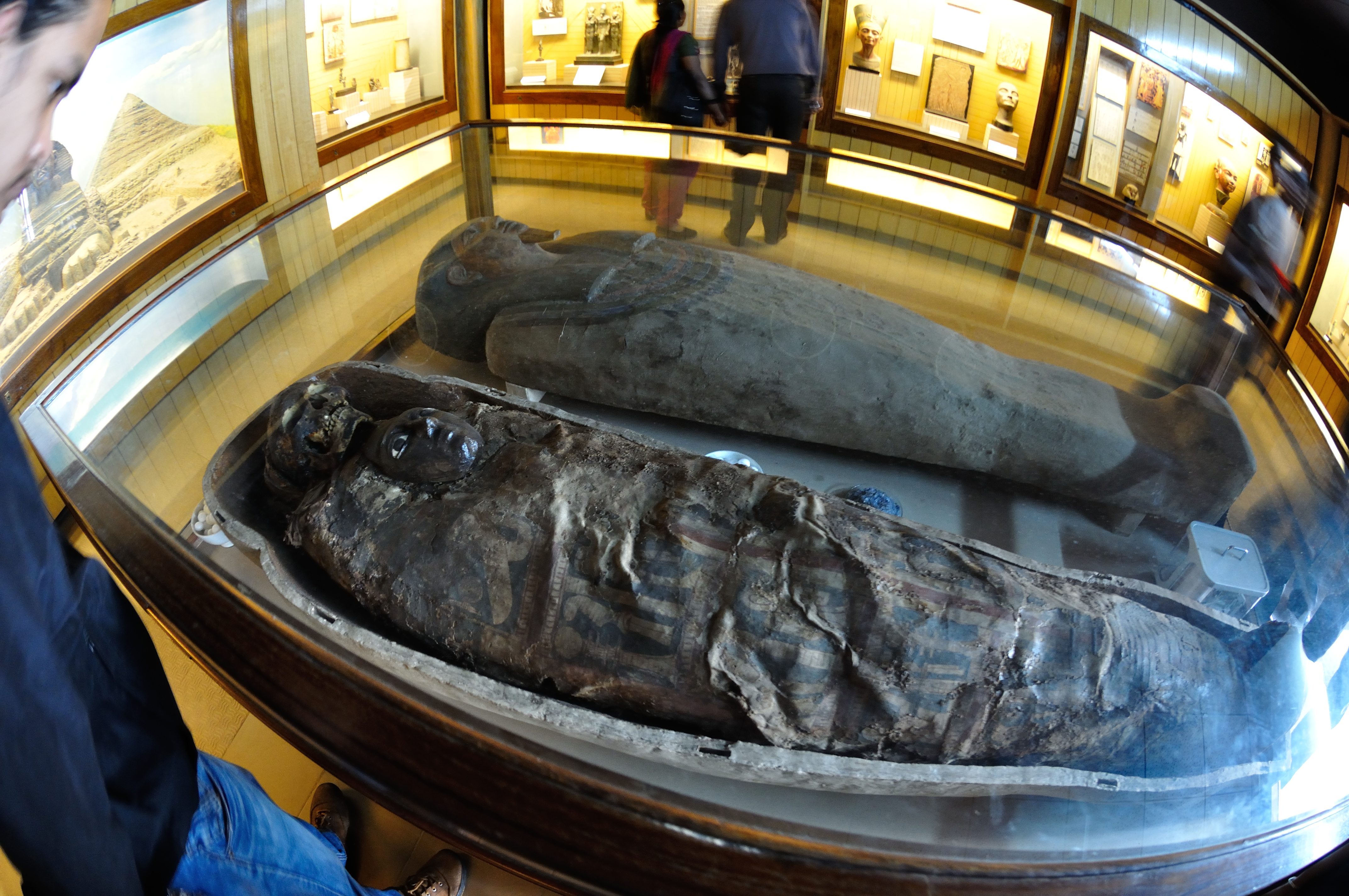 Egyptian human mummy at the Indian Museum, Kolkotta