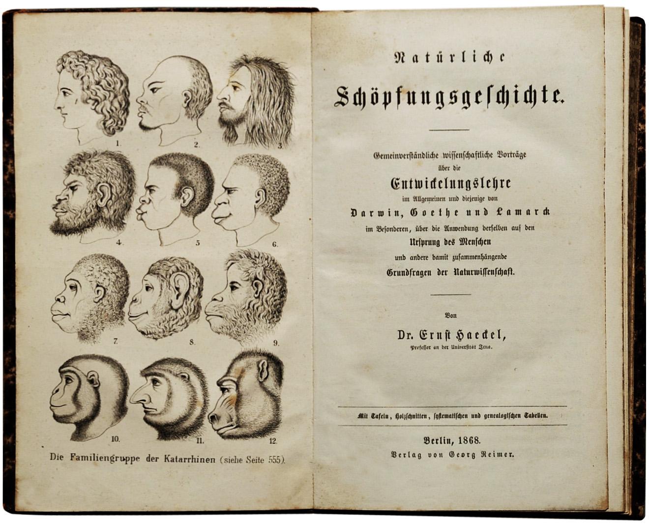 Ernst Haeckel – Wikipedia