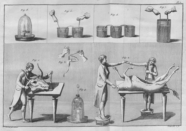 File:Experiments with buckets animal parts Essai th orique et exp rimental sur le galvanisme 1804.jpg