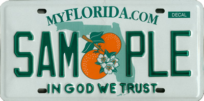 Florida License Plate Type Rgs
