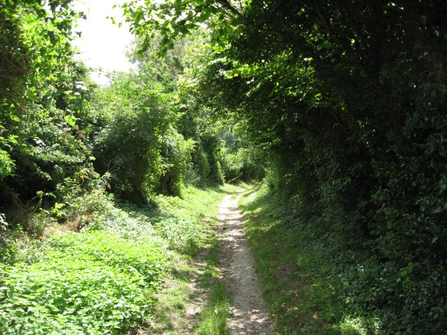Green lane to Stourpaine - geograph.org.uk - 1425303