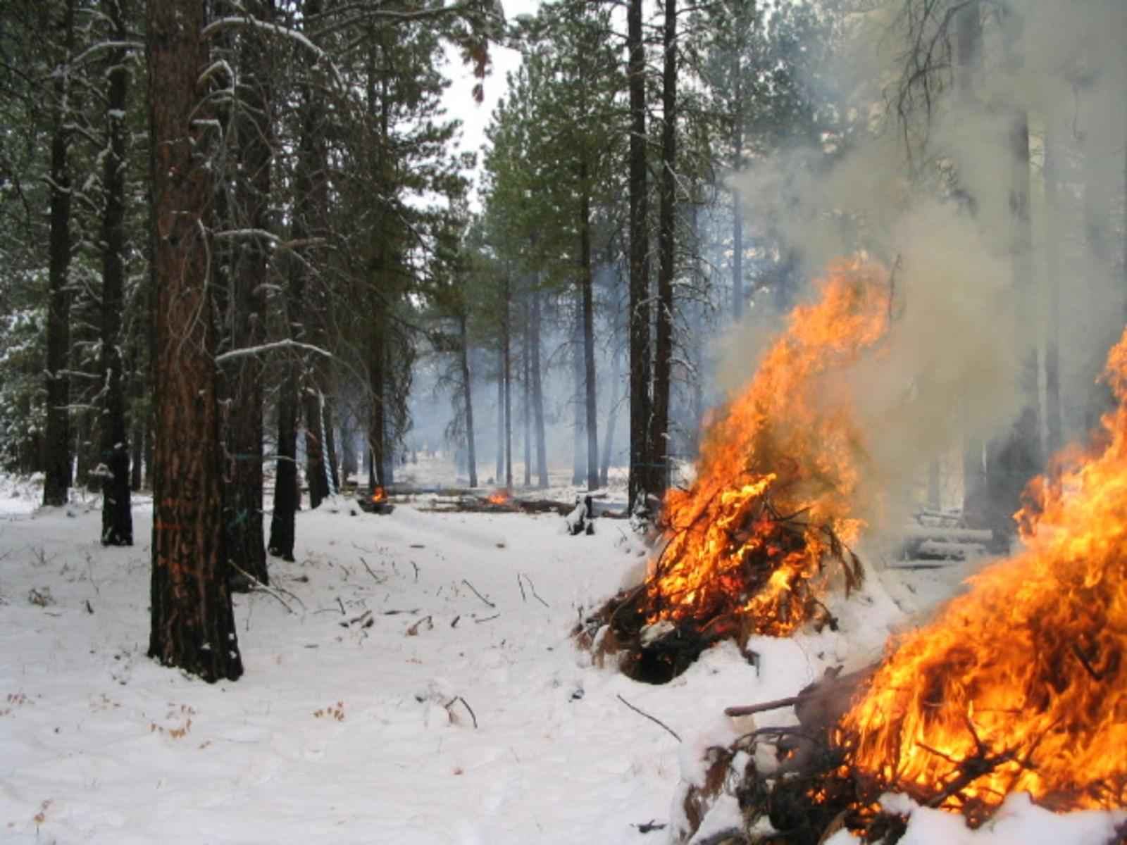 Image result for fire in snow