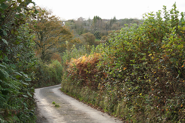 File:High Bickington, lane near Shuteley - geograph.org.uk - 606545.jpg