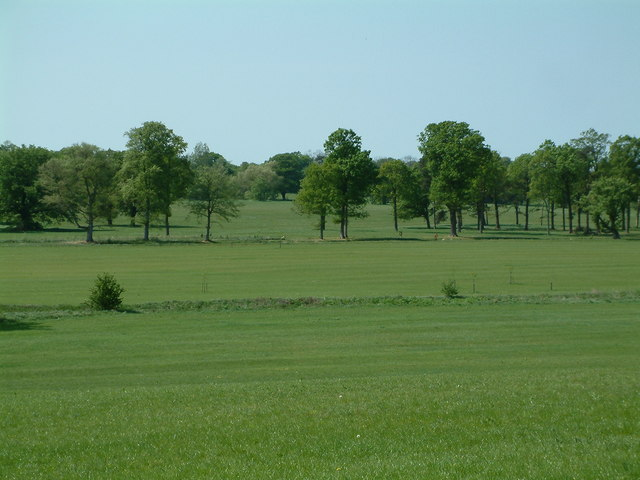 Hylands Park, Chelmsford - geograph.org.uk - 418451
