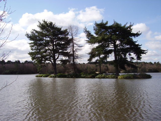 Island on Hawley Lake - geograph.org.uk - 729704