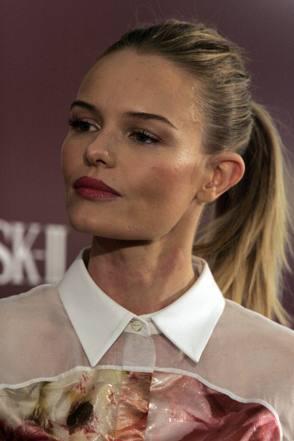 Kate Bosworth Wanted Poster Celebrity Birthday-7870